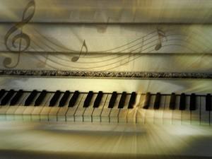 Foto: Didi01  / pixelio.de